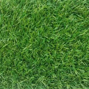 מחלקת דשא סינטטי