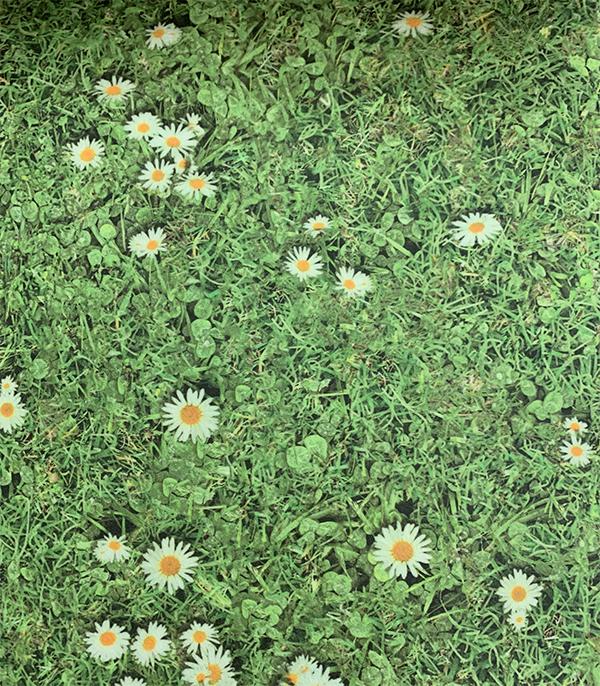 פי וי סי פרחים - סביון